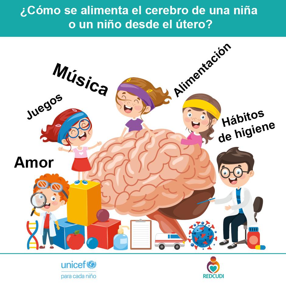 Afiche 11.Alimento del cerebro